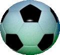 Правила поведения болельщиков при проведении футбольных матчей на стадионах